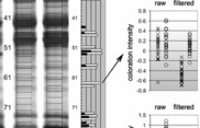 A method for determining fractions of biological mixtures specific for a physiological condition following chromatographic separation