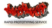 Rapid Prototyping Service