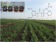 Development and evaluation of innovative tools to estimate the ecotoxicological impact of low dose pesticide application in agriculture on soil func...