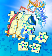 Computational Solutions in the Life Sciences: The Importance of Molecular Flexibility (CompSoLS-MolFlex)