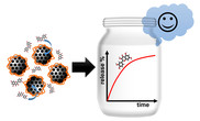 Biocompatible nanoparticles with enhanced therapeutic efficacy of flavonoids in food