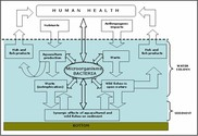 Aquatic microbial ecology  as an indicator of the health status of the environment  - AQUAHEALTH