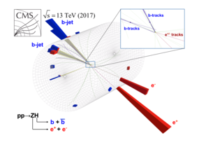 Long-Sought Higgs Boson Decay Finally Measured