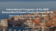 International Congress of the NDP Kinase/Nm23/Aawd Family