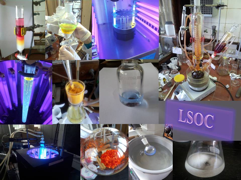 Laboratory of Synthetic Organic Chemistry